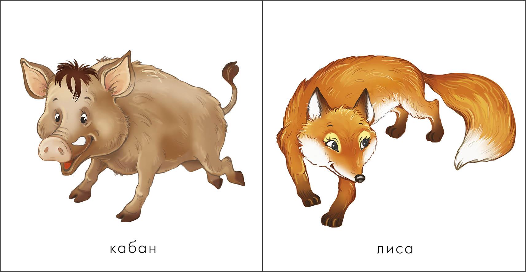 Картинки лесных животных для детей детского сада 8